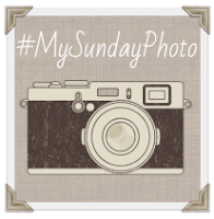 My Sunday Photo linky badge