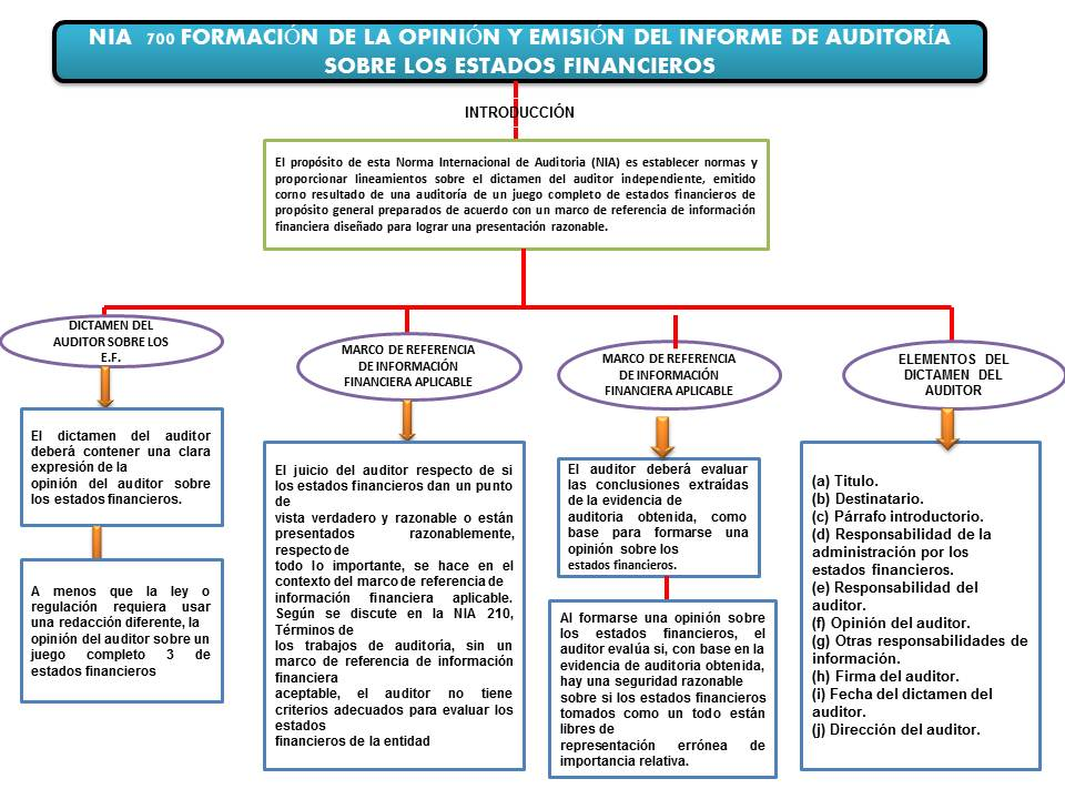 Fundamentos de auditoria: NIA 700: FORMACIÓN DE LA OPINIÓN Y EMISIÓN ...