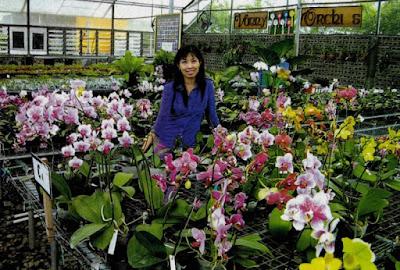 Vonny Orchids.