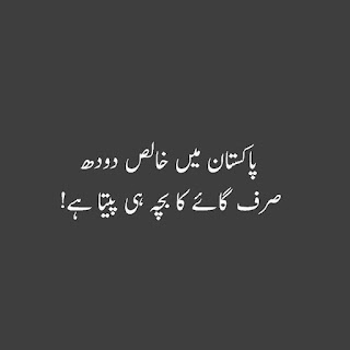 funny urdu quotes 06