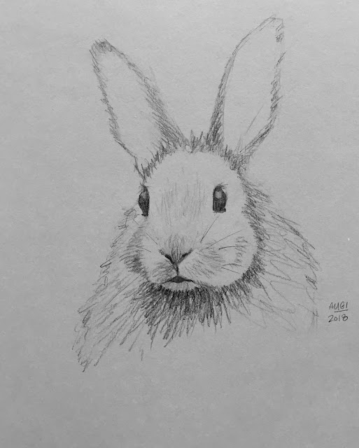 Daily Art 08-01-2018 sketch of a bunny on grey toned paper