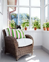 Single wicker chair and small plants