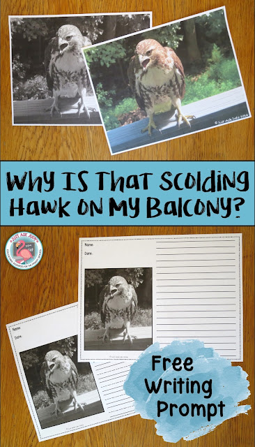 A FREE photo writing prompt about a hawk's visit to my balcony for first, second, and third graders
