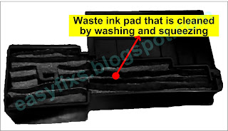 Waste ink pad which is squeezed when cleaned