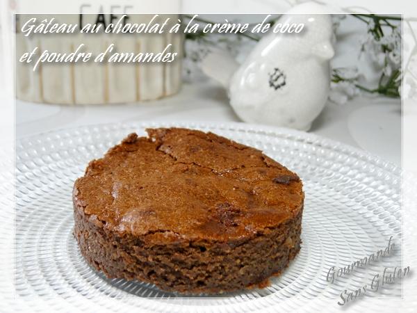 Gâteau chocolat fondant sans beurre sans lactose sans farine