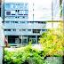 Νορβηγία: Πώς αντιμετώπισε το κορυφαίο σύστημα υγείας στον κόσμο τον κορωνοϊό. Τα κορυφαία συστήματα υγείας, στις μεγάλες κρίσεις φαίνονται.