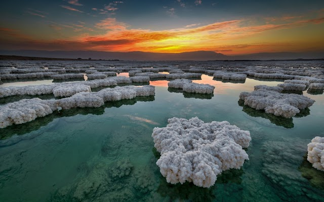 Dead Sea Does Not Allow Any Living Creature To Live On It
