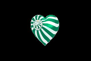 Coração verde e branco Caldense