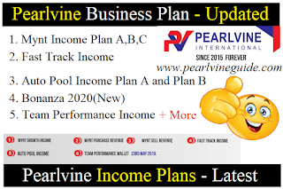 Pearlvine Business Plan Income Full Plan - Pearlvine Guide
