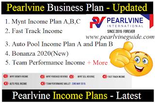 Pearlvine Business Plan Income Full Plan - Pearlvine Guide
