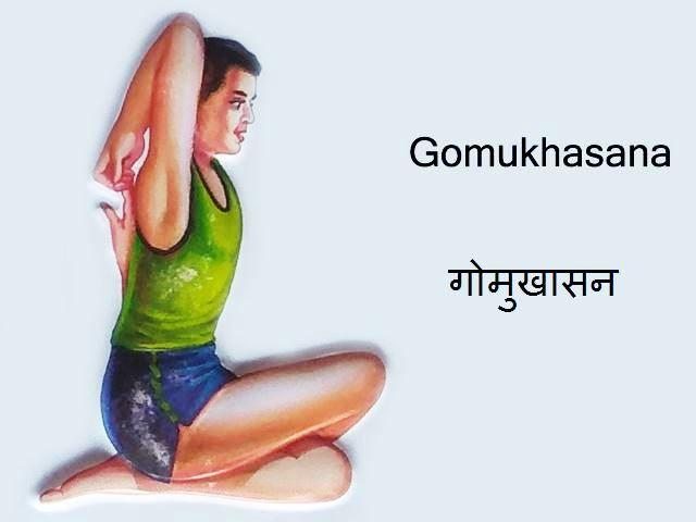 Gomukhasana: Gomukhasana in Hindi