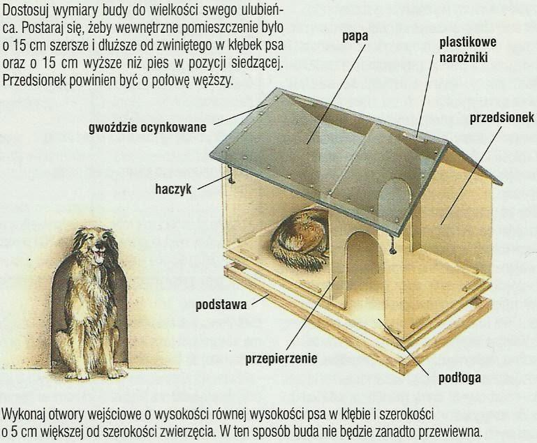 jak zrobić budę dla psa domowe-zoo.blogspot.com