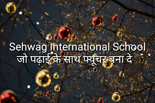 Sehwag international school admission