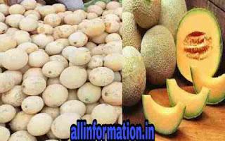 गर्मियों के कुछ मौसमी फलों का सेवन हमारे स्वास्थ्य के लिए काफी लाभदायक होता है। एक्सपर्ट ने भी इस फल को इम्यूनिटी बढ़ाने में मददगार बताया है।