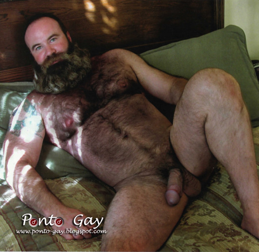 Gay adult porn pictures anal