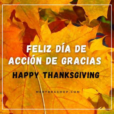 tarjeta feliz dia de acción de gracias noviembre thanksgiving
