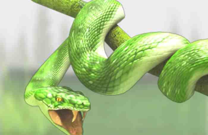 venomous non-poisonous snakes