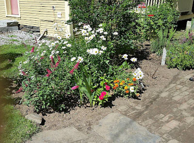 Summer flowers in Vermont. Share Now. #flowerbeds #eclecticredbarn