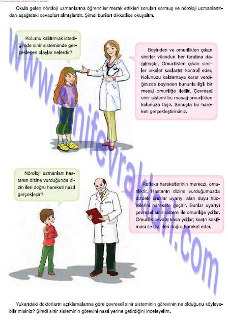 7. Sınıf Mevsim Yayınları Fen Bilimleri Ders Kitabı Cevapları Sayfa 35