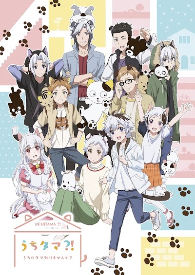 Uchi Tama?! Uchi no Tama Shirimasen ka? Subtitle Indonesia Batch
