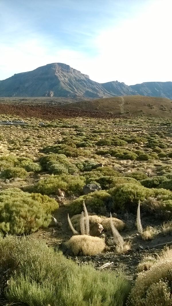Paisaje Teide Tenerife