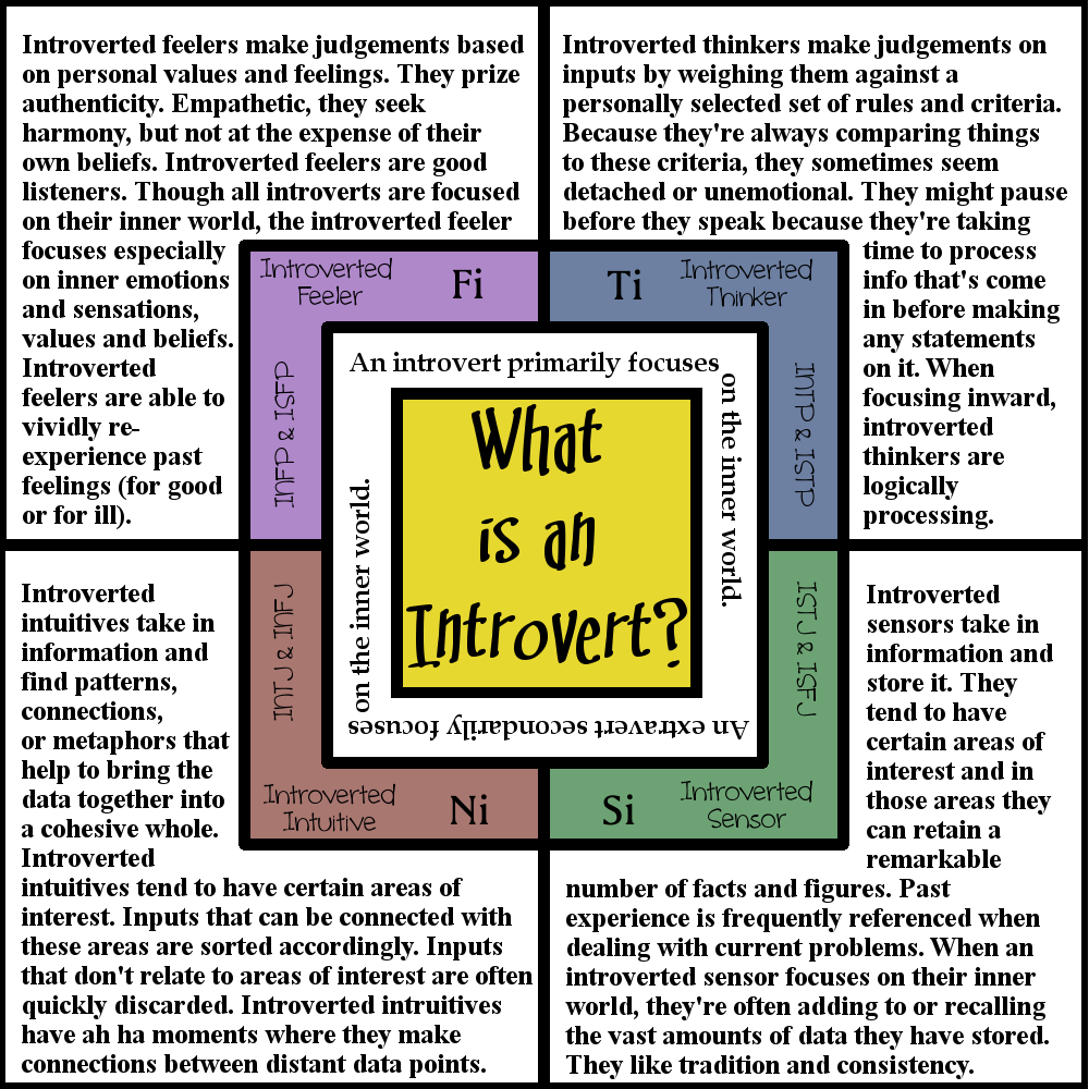 (usually barefoot) meg: What Is an Introvert?