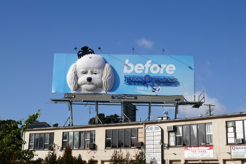 Pooch Perfect Before 3D billboard