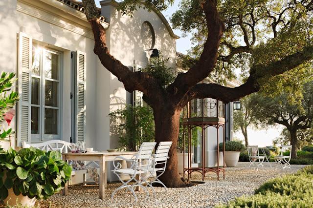 sillas hierro blanco jardin bajo abrol del jardin