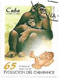 Selo Chimpanzé