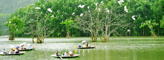 Trekkinh In Ninh Binh: Let's experience the great things about Ninh Binh