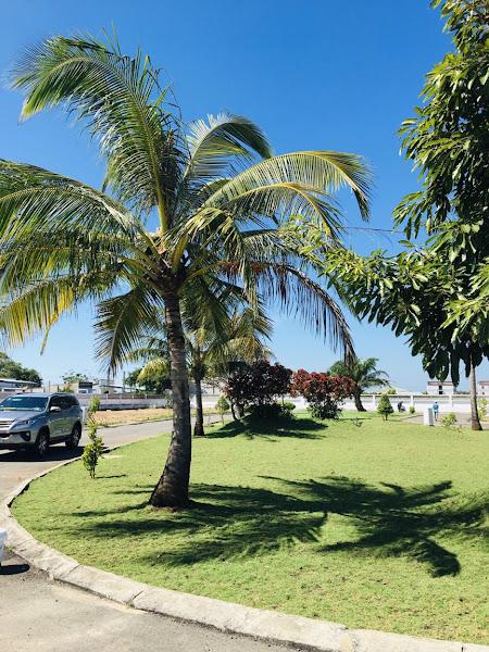 hình ảnh công viên thuộc dự án Princess Hồ Tràm