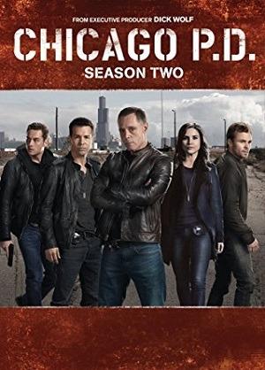 Série Chicago P.D. Distrito 21 - 2ª Temporada Legendada 2015 Torrent