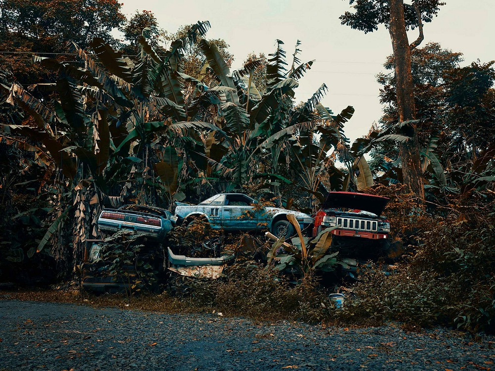 Abandoned Cars in Hawaii