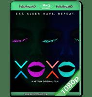 XOXO: LA FIESTA INTERMINABLE (2016) WEB-DL 1080P HD MKV ESPAÑOL LATINO