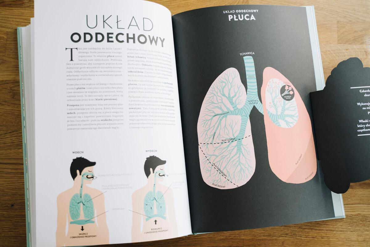 Wnętrze książki Anatomia wydawnictwo mamania helene druvert