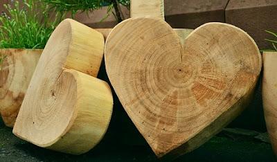 cedar wood for spider prevention