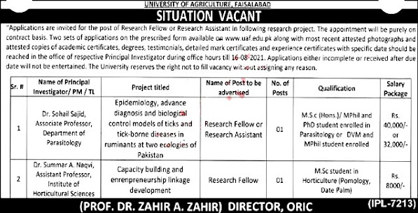 Latest Jobs in  University of Agriculture UAF  Faisalabad 2021