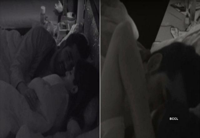 Bigg Boss 11 : Puneesh and Bandagi Lip Lock Kiss Caught on Cam
