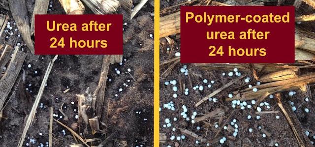 urea esn polymer-coated urea nitrogen fertilizer