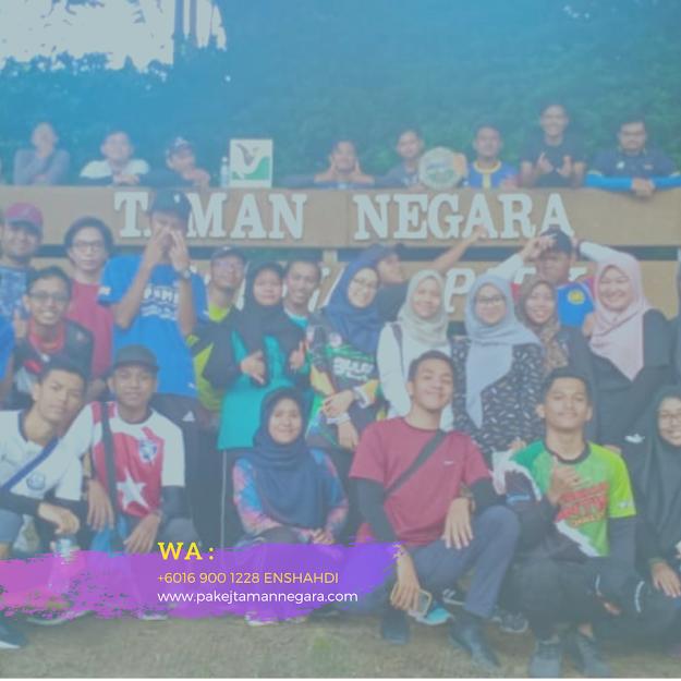 nks taman negara  taman negara tour package  taman negara mutiara chalet  taman negara pahang blog  pokok yang ada di taman negara  taman negara tour operators  sejarah taman negara pahang  taman negara camping, Mutiara Taman Negara Pahang