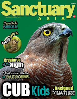 Sanctuary Magazine for Animal lovers