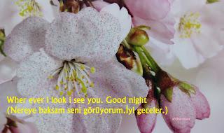 en güzel iyi geceler mesajları, english good night mesaj, facebook ingilizce good night mesajları, good night mesaj, ingilizce iyi geceler mesajları kısa, iyi geceler mesajları ingilizce,