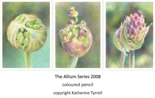 The Allium Series 2008 copyright Katherine Tyrrell