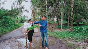 Jalan Berlubang Tak Kunjung Diperbaiki, 2 Pemuda Di Solok Selatan Tanam Pisang Di Jalan Berlubang
