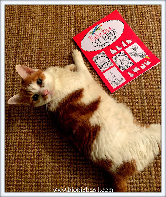 Feline Fiction on Fridays #120 ©BionicBasil® Valentine Cat Lover Coloring Book - Amber's Purrsonal Copy
