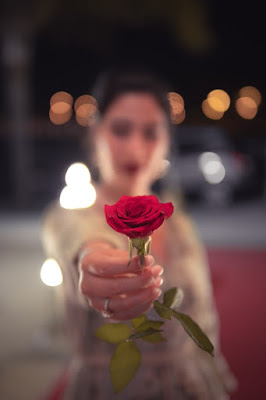 Rose in Hand Whatsapp DP For Girl