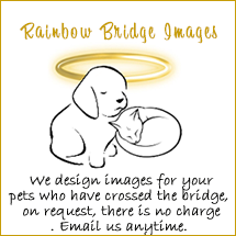 Rainbow Bridge For You