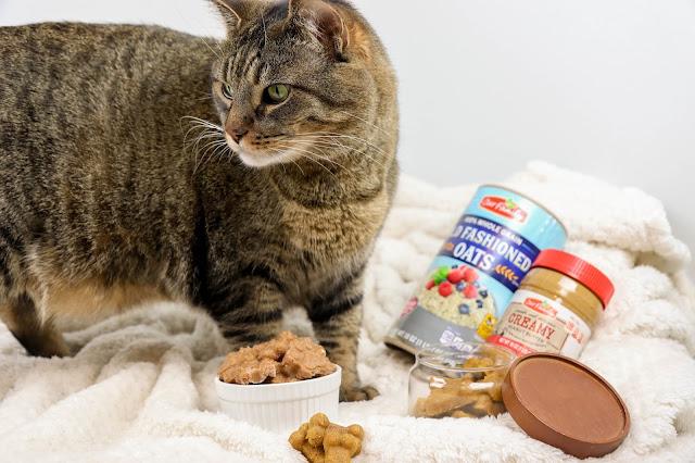 Homemade Cat & Dog Treats