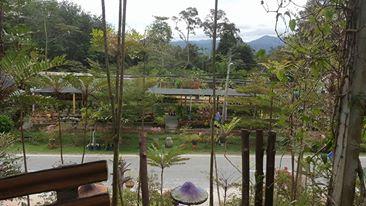 Agen Shaklee Taiping