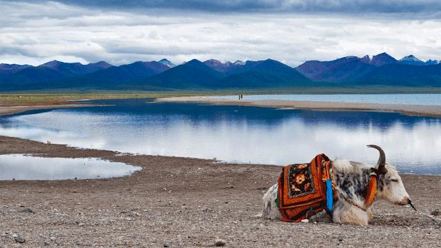 Hồ Namtso